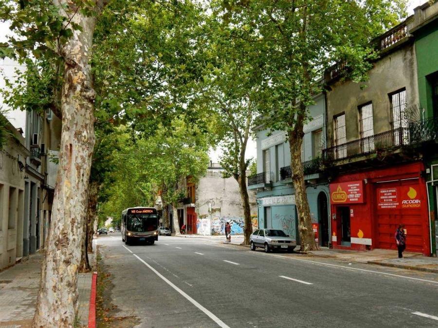 Uruguay | Montevideo, Nebenstraße in Form einer typischen Allee im Barrio Sur mit einem Stadtbus