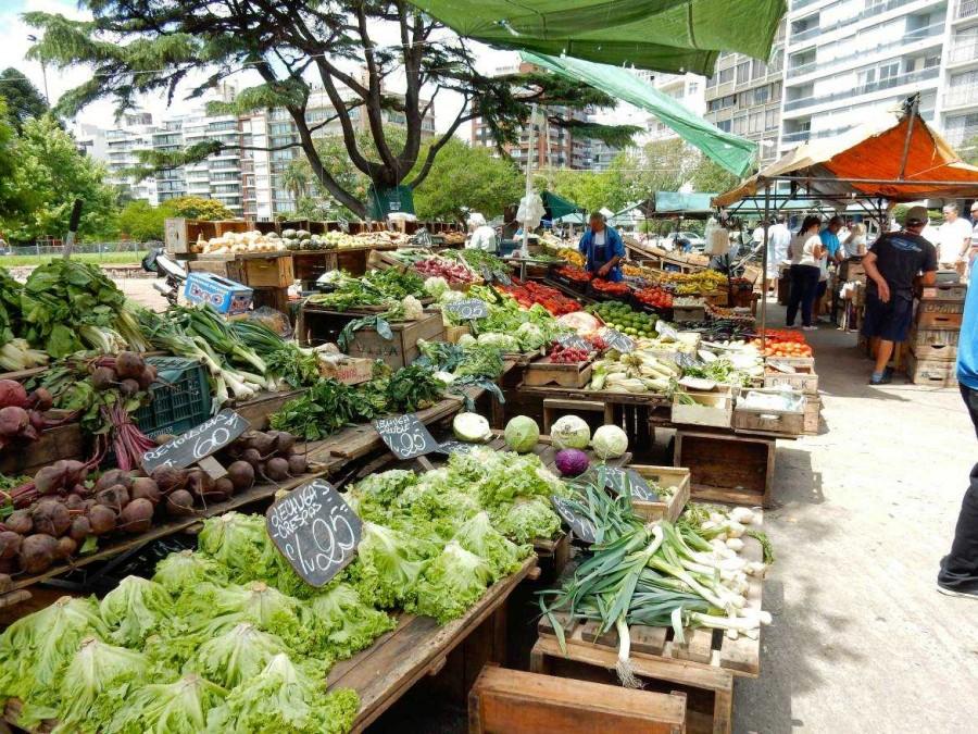 Montevideo | interessante Orte: Die zahlreichen Märkte der Stadt sind einen Besuch wert, hier eine Gemüsemarkt im Park