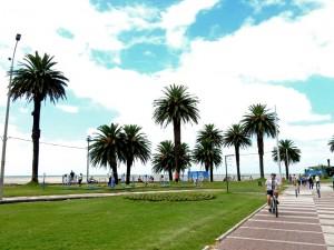 Uruguay | Montevideo, Am Rambla verbringen die Einwohner ihre Freizeit. Er lässt sich besonders gut mit dem Fahrrad erkunden. Unter Palmen befindet sich eine Open Air-Fitnesscenter