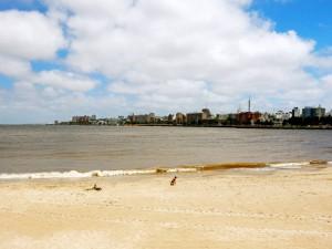 Uruguay | Montevideo, Vom Playa Ramirez am Rambla hat man einen schönen Blick auf die Skyline. Das braune Wasser bildet einen schönen Kontrast zum blauen Himmel