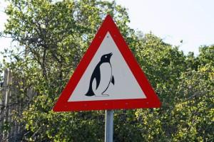 Südafrika | Kap-Halbinsel, Achtung Pinguine bei Simons Town. Ein rot-weißes dreieckiges Warnschild mit einem schwarzen Pinguin in Nahaufnahme