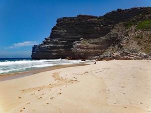 Südafrika | Kapstadt, Kap-Halbinsel, Robbe am Dias Beach im Cape Point National Park. Blick auf die Robbe am Strand mit der Bergkette im Hintergrund