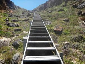 Südafrika | Kapstadt, Kap-Halbinsel, Dias Beach, viele Treppen führen nach oben