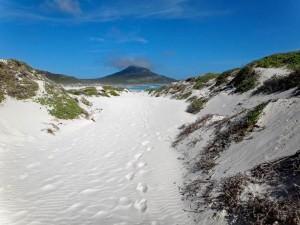 Südafrika | Kapstadt Kap-Halbinsel, Plattboom Beach im National Park. Panorama durch die Dünen