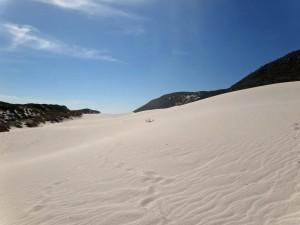 Südafrika | Kapstadt, Kap-Halbinsel, Sanddünen am Plattboom Beach