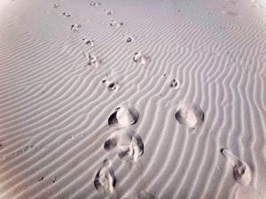 Südafrika | Kapstadt, Kap-Halbinsel, Spuren im Sand am Plattboom Beach