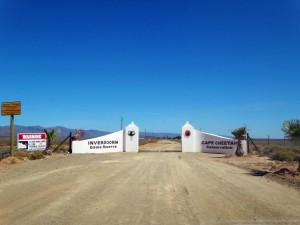 Südafrika | Eingang zur Safari im Inverdoorn Game Reserve 2,5 Stunden von Kapstadt. Blick auf die Pistenstraße und das weiße Eingangstor bei strahlend blauem Himmel