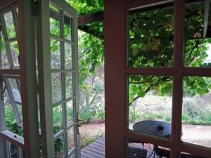 Südafrika | Kapstadt, Aussicht im Devon Valley Hotel in der Weinregion Stellenbosch. Blick auf die Terrasse mit Weinreben aus unserem Zimmer