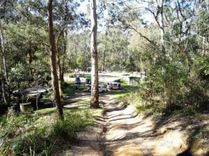 Australien | Camping in der Nähe der Blue Mountains im Glen Park Reserve in New South Wales. Kostenloser Campingplatz inmitten der Natur