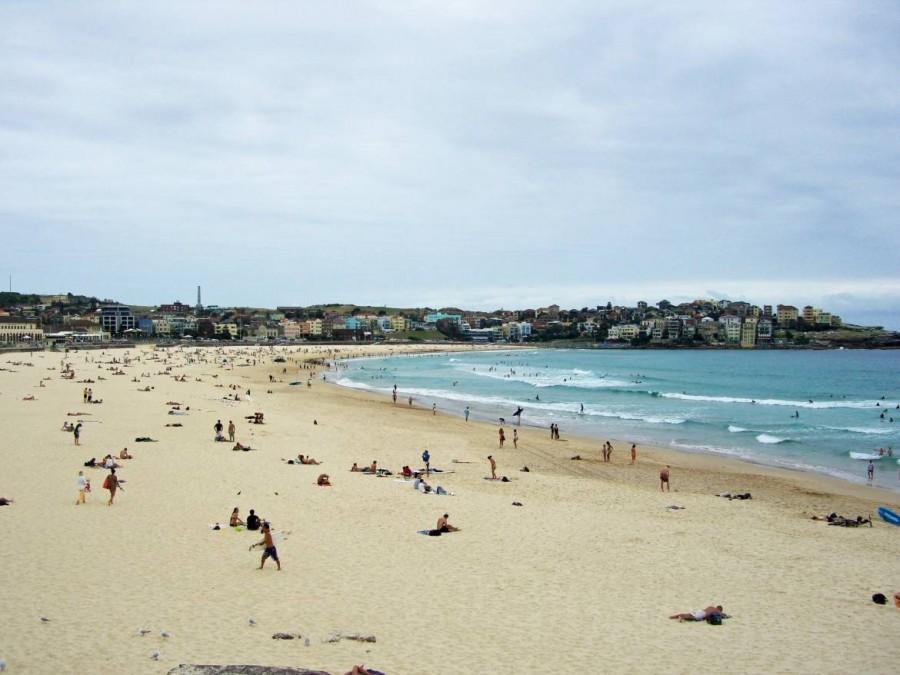 Australien | Sydney, Bondi Beach. Panorama auf den Surferstrand