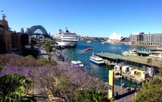 Australien | Sydney, Panorama auf Circular Quay mit Hafen, Oper und Harbour Bridge. Sehenswürdigkeiten, interessante Orte & Reise-Highlights gibt es viele. Unsere Top-Tipps & Touren haben wir in unserem Guide & Reisebericht zusammengefasst