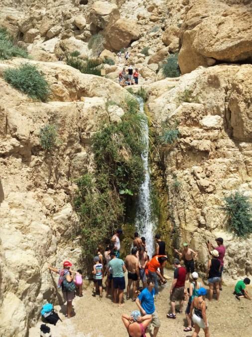 Ein Gedi | Willkommene Abkühlung in der Wüstenhitze unter einem Wasserfall