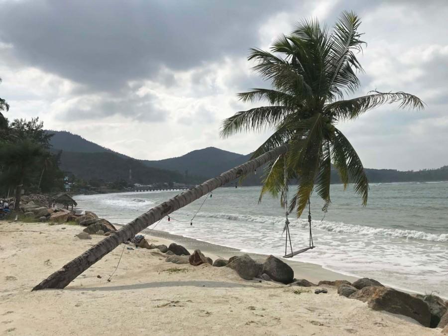 Thailand  Koh Phangan, der Strand Ao Chaloklum im Norden der Insel. Blick auf eine Palme mit Schaukel am Strand vor dem Meer