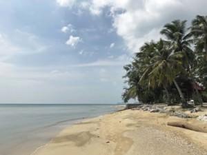 Thailand |Koh Phangan, Haad Baantai Beach, der Strand zum gleichnamigen Ort im Süden der Insel. Blick auf feines Sand, Palmen, blaues Meer und Himmel