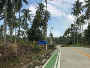Thailand |Koh Phangan, Straße vom Wasserfall zum Strand Had Than Sadet, Palmen am Straßenrand