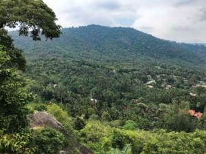 Thailand |Koh Phangan, Panoramaausblick auf dem Weg nach Thong Nai Pan Noi. Blick auf Berge, Urwald und Palmen