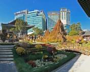 Südkorea | Seoul Jogyesa Tempel Panorama. Blick auf die bunten Blumen im Vorgartens zum Tempel mit modernen Hochhäusern der Stadt im Hintergrund bei blauem Himmel