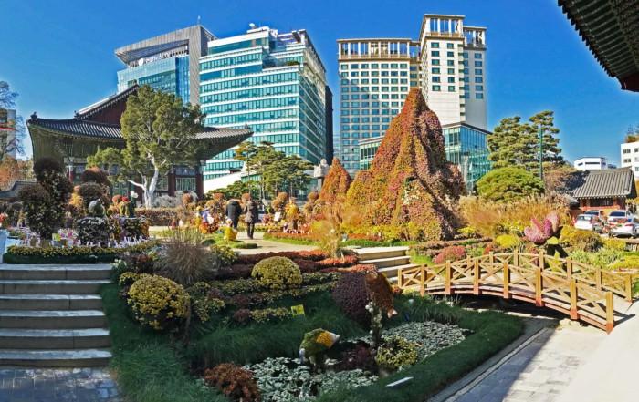 Südkorea   Seoul Jogyesa Tempel Panorama. Blick auf die bunten Blumen im Vorgartens zum Tempel mit modernen Hochhäusern der Stadt im Hintergrund bei blauem Himmel