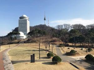Südkorea | Blick auf den N-Seoul Tower vom Namsan Park aus bei blauem Himmel