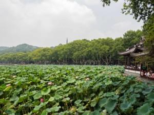 Sehenswürdigkeiten & interessante Orte: Der berühmte Westsee oder West Lake in Hangzhou