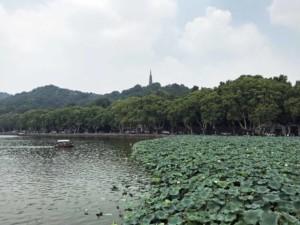 Sehenswürdigkeiten & interessante Orte: Der Westsee, West Lake in Hangzhou
