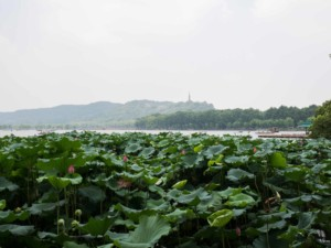 Interessante Orte in Hangzhou: Westsee, West Lake im Norden