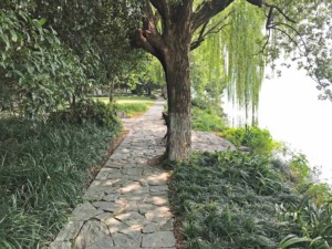 Tipps & Guide: Auch einsam kann man am Ufer des Westsee in Hangzhou spazieren gehen
