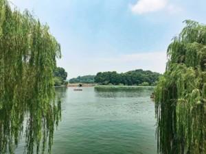 Sehenswürdigkeiten & interessante Orte: Die Tour zum Westsee in China Hangzhou ist sehr idyllisch