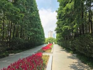 Ein typischer Park in Central Shanghai