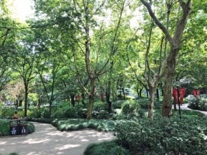 People's Park in Shanghai