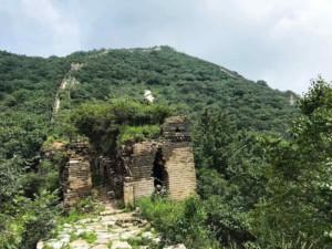 Der Abschnitt Jiankou ist teilweise sehr bewachsen und wild