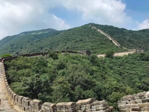 Unendlich lang erscheint die große Mauer bei Mutianyu manchmal