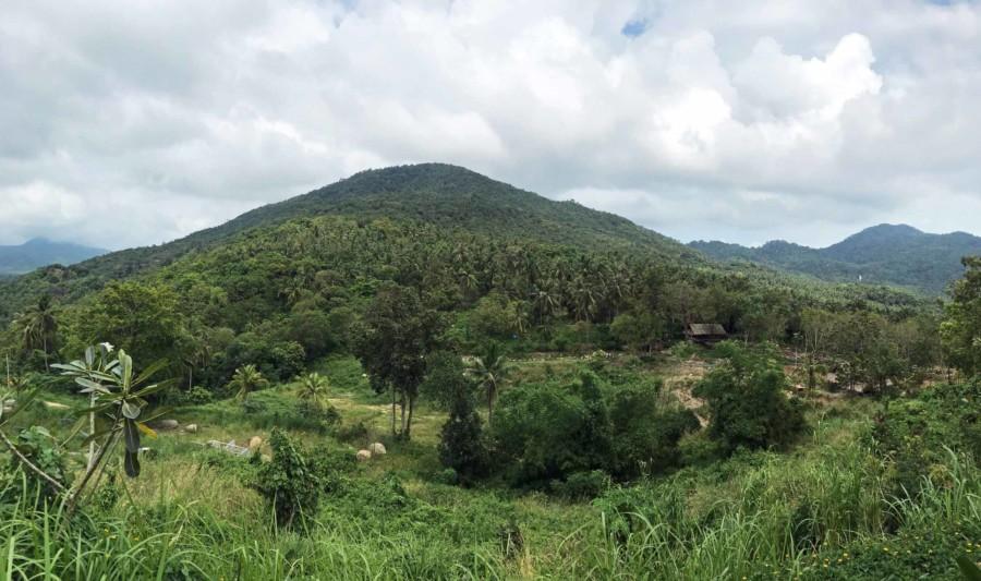 Urwald und Berge zieren das Innere der Insel Koh Phangan