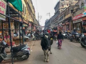 Die Stadt Agra