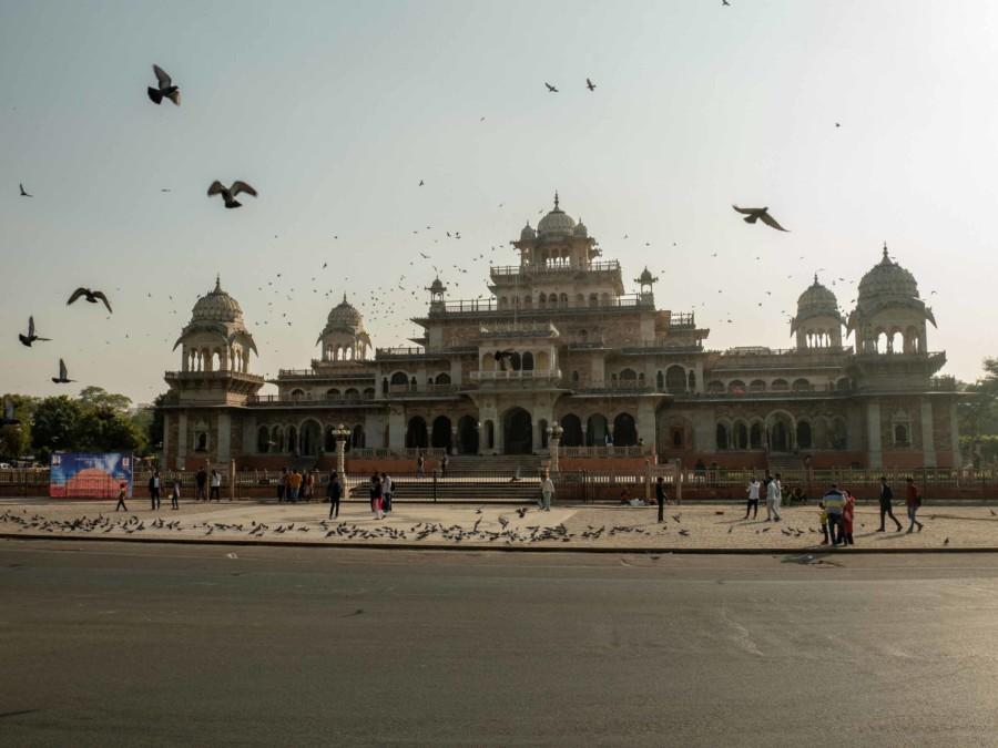 Sehenswürdigkeiten, Highlights & Tipps: Albert Hall Museum in Jaipur