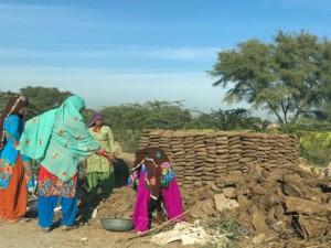 """Indien Erfahrungen: """"Street Cow"""" Mist wird in Kuchenform gebracht, am Straßenrand getrocknet und später zum Heizen verwendet"""
