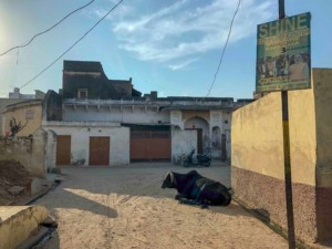 Landleben in der Wüste in Nawalgargh und Mandawa