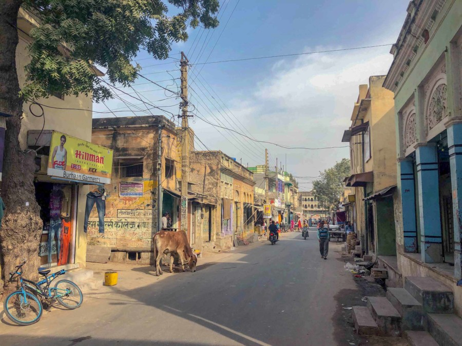 Inmitten der Havelis: Typische Straße in Nawalgarh