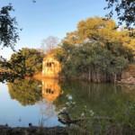 Die Szenerie des Ranthambore Nationalpark in Indien ist sehr idyllisch.