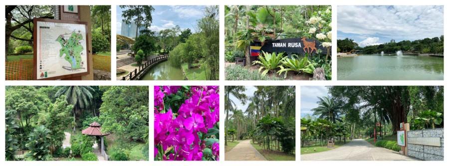 Sehenswürdigkeiten und Highlights: Eindrücke des Botanischen Garten
