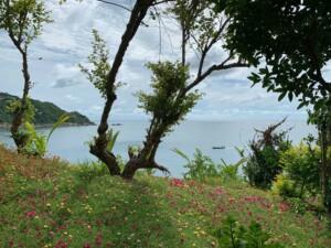 Tipps & Highlights: die Stimmung in den Buchten ist besonders morgens wunderschön, hier im Sai Daeng Resort mit Blick auf die Aow Leuk Bucht