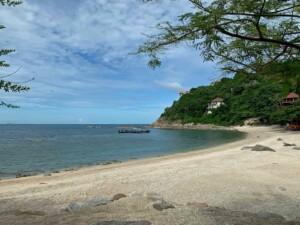Beim Schnorcheln in der Sai Daeng Bay kannst Du Riffhaie uns Schildkröten entdecken
