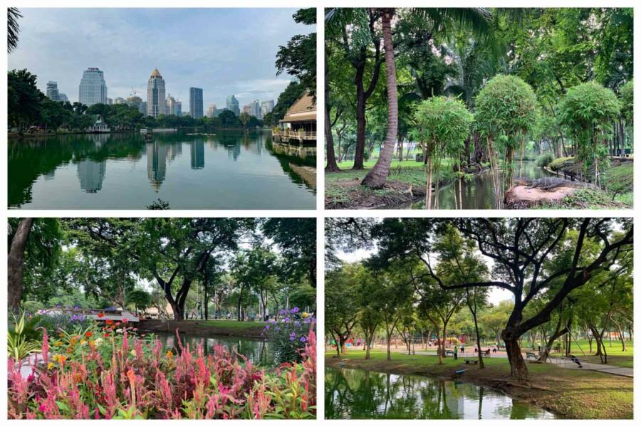 Sehenswürdigkeiten, interessante Orte, Tipps & Highlights in Bangkok: Ein Besuch des Lumphini Parks ist sehr zu empfehlen